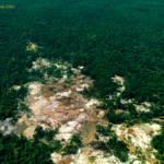 Luftaufnahme von Gold Abbau in Wald in Guyana Beispielhaftes Bild für Gold Abbau in Guyana | Bild (Ausschnitt): © Allan Hopkins [CC BY-NC-ND 2.0]  - flickr