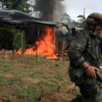Kolumbien Die USA machen Kolumbien Druck, die gewaltsame Eradikation fortzusetzen. Das Nachhaltigkeitsprogramm bleibt dabei auf der Strecke.   Bild (Ausschnitt): © Policía Nacional de los colombianos [CC BY-SA 2.0]  - Flickr